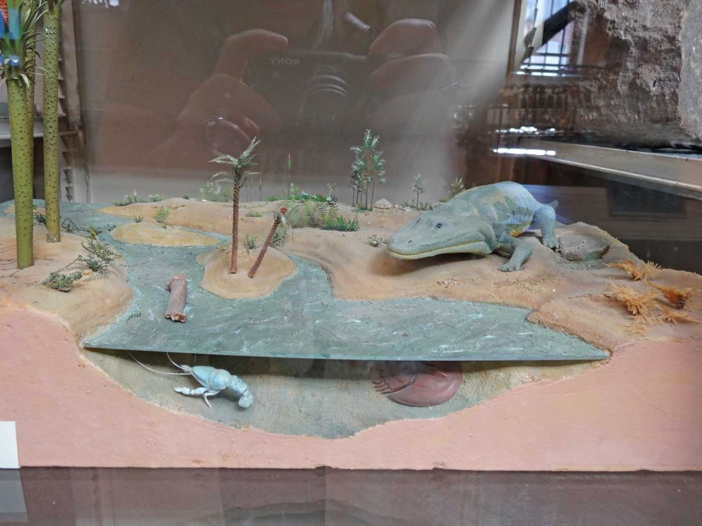 A Diorama in Paris showing prehistoric creatures